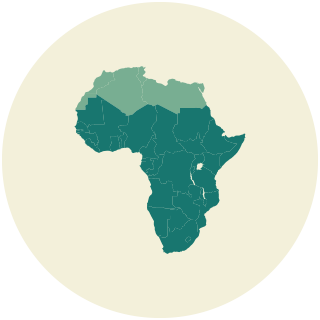 95% of that investment will be directed to sub-Saharan Africa